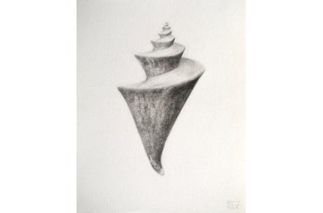 """caracola """"Pagoda Japonesa"""""""