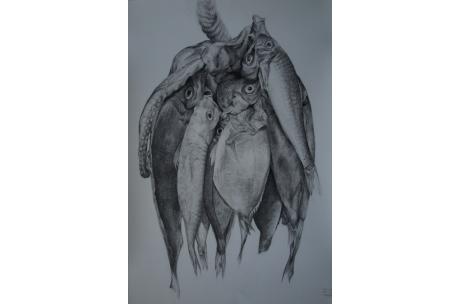 "animales ""pescados"""