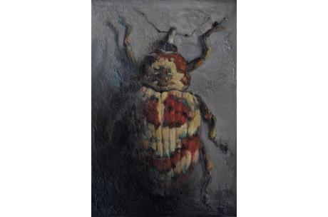 """escarabajo """"Gorgojo Cratosomus"""" óleo"""