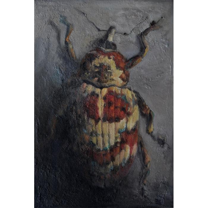 Escarabajo Gorgojo Cratosomus