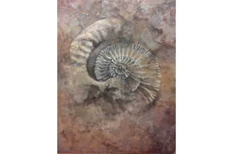 "fósil ""Ammonite"" óleo"
