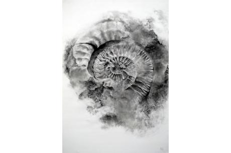 naturaleza fósil en su interior