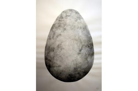 naturaleza huevos ratonero