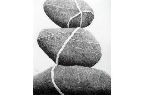 naturaleza piedras el camino