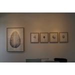 """Origen II"" Galería Materna y Herencia Madrid 2014 n10"