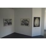 """Origen II"" Galería Materna y Herencia Madrid 2014 n7"