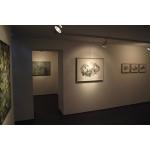"""Origen II"" Galería Materna y Herencia Madrid 2014 n8"