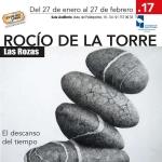 cartel Oficial Las Rozas 2017