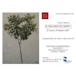 invitación web Las Rozas 2017